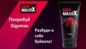 Гигамакс
